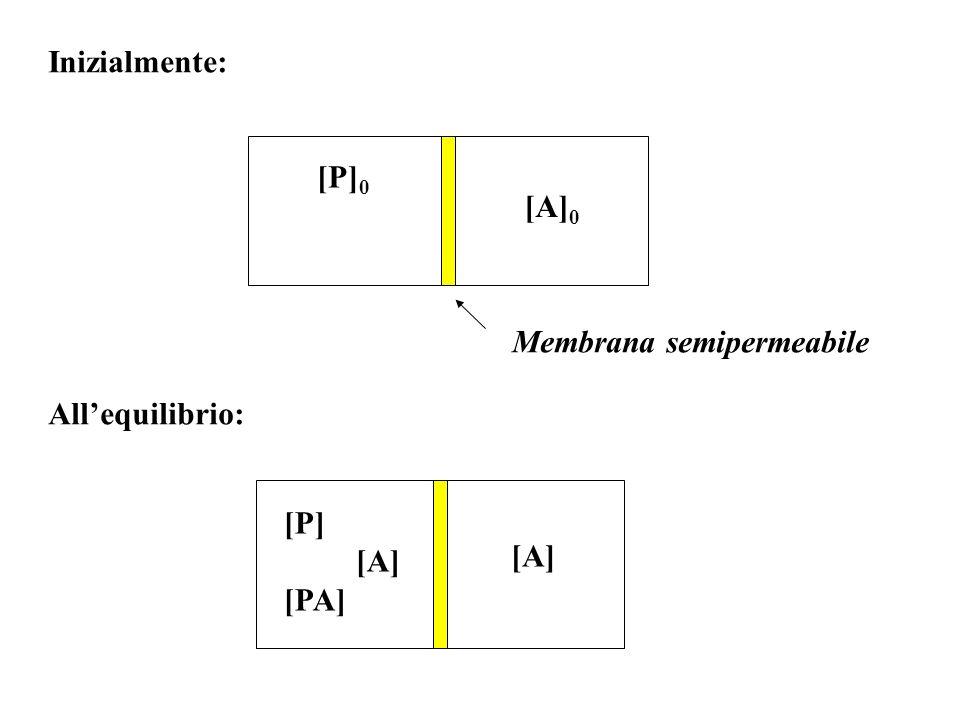 Inizialmente: [P]0 [A]0 Membrana semipermeabile All'equilibrio: [P] [A] [PA]
